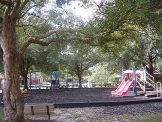 Branch Tree Park